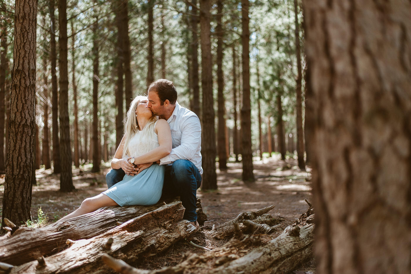 Tokai forest engagement photography
