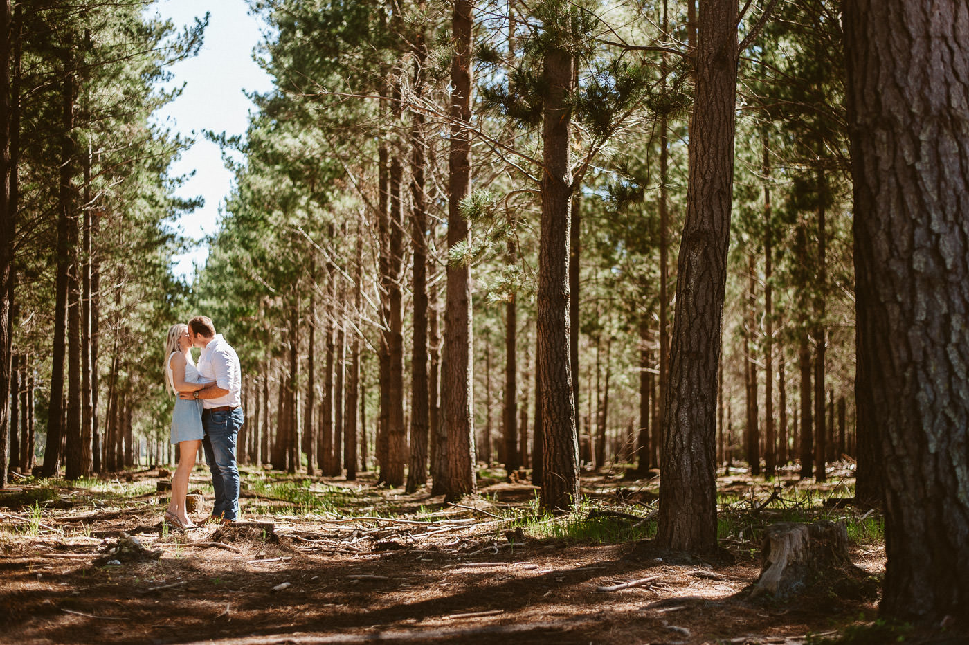 engagement photography in the forest